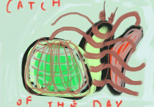 Catch Of The Day | IPadtekening