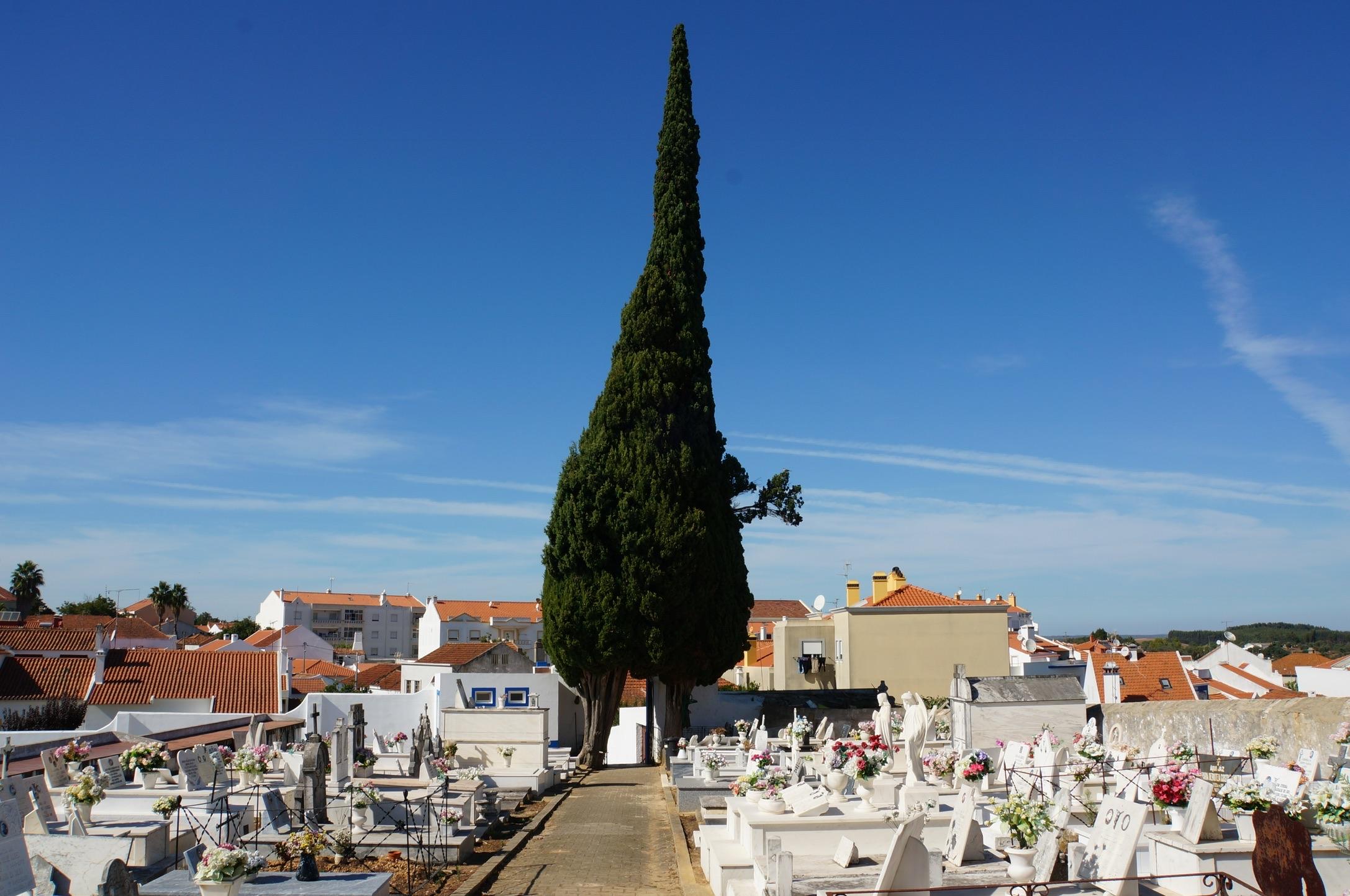 Foto Ra Van Der Hoek | Oktober 2016 | Cercal Portugal