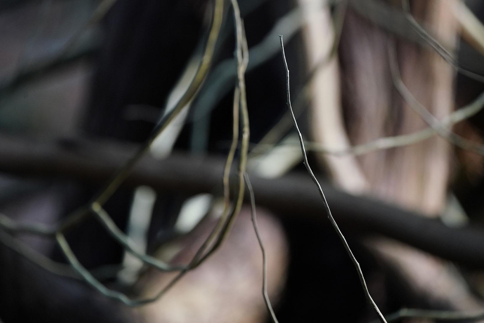 Verbonden | Foto